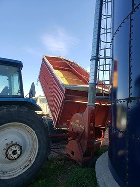 Wrapping up harvest 2020